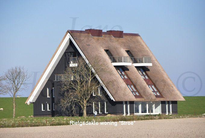 Home houten huizen rietgedekte woning bouwen